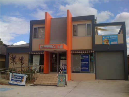 Bass Hill Vet located at 731 Hume Highway, Bass Hill, NSW. Why not come in and see us!
